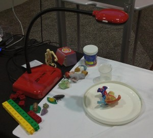 3D Ladibug FETC